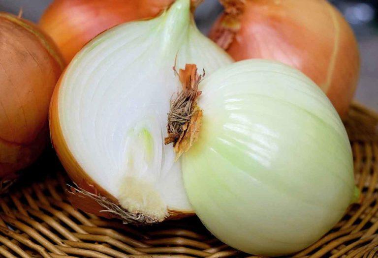 sagra della cipolla a Giarratana