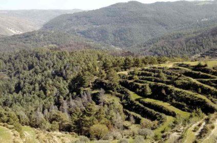 parco forestale canalazzo a monterosso almo