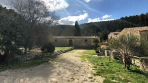 Le Necropoli del Monte Casasia