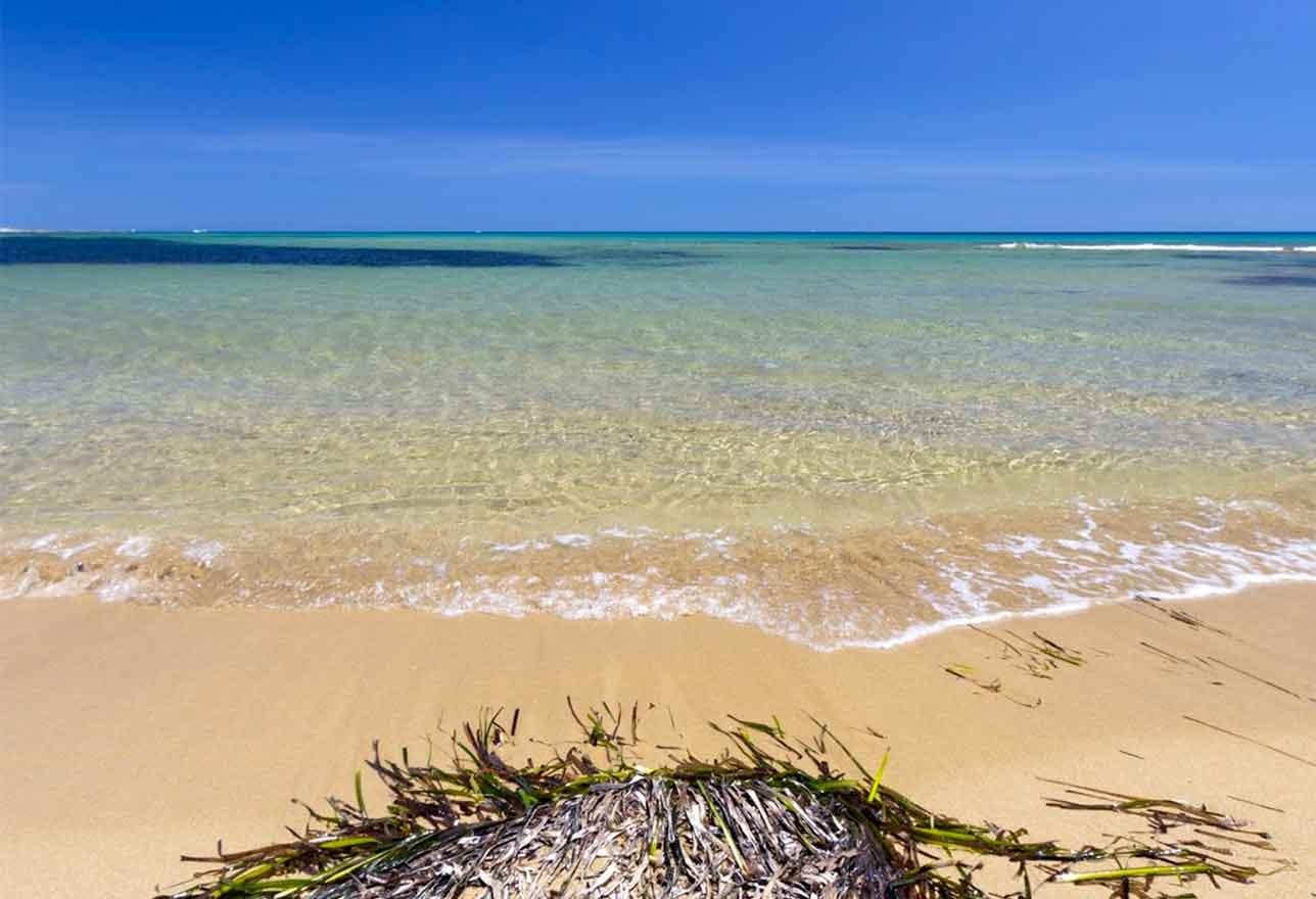 isola delle correnti porto palo spiagge