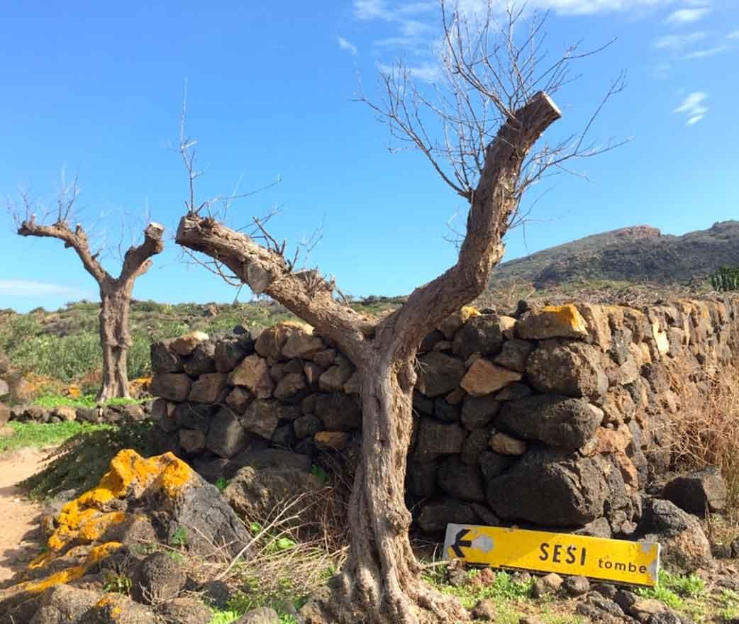 Parco Archeologico dei Sesi Pantelleria