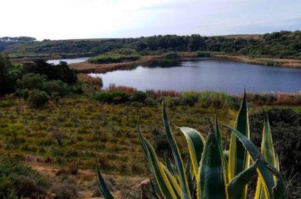 Riserva Naturale Lago Preola Mazara del Vallo
