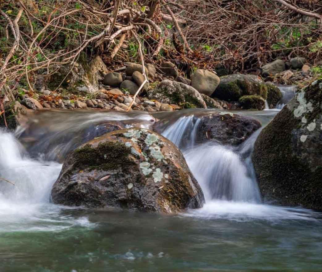 Riserva Naturale Parco dei Nebrodi a Montalbano elicona
